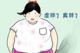 虚胖的人怎么减肥最快 健脾祛湿就对了